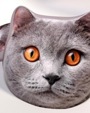 dekoracny vankus mačička