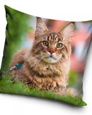 Dekoračné obliečky na vankúše Mačička v tráve