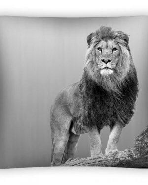 obliečky na dekoračné vankúše lev